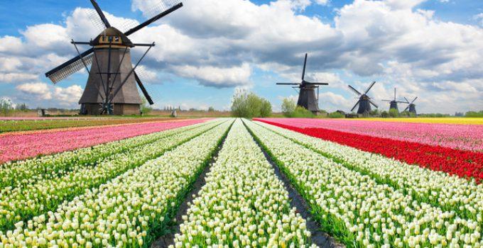 Väderkvarn i Nederländerna